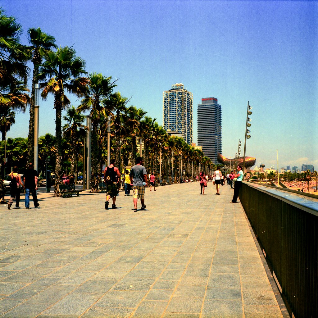 city-break-barcelona-faleza