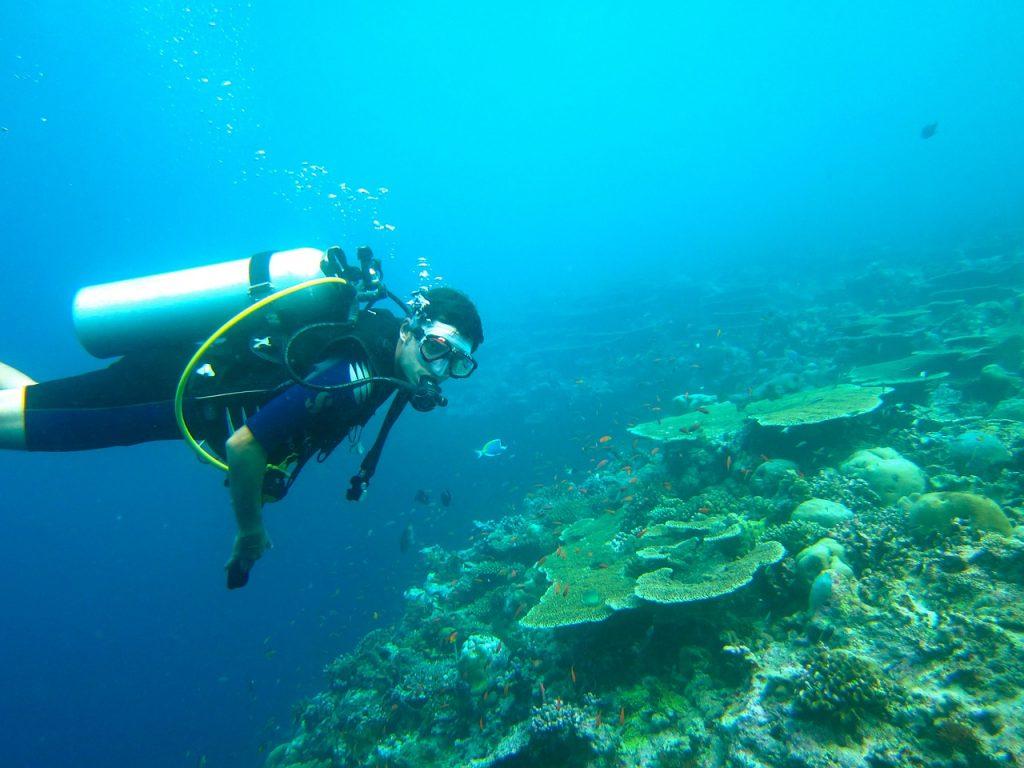 Scuba diving Maldive