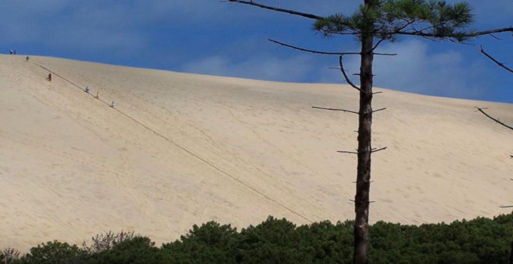 Dune du Pilat, vedere de la baza