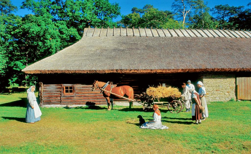 Obiective turistice Talinn - Muzeul estonian in aer liber