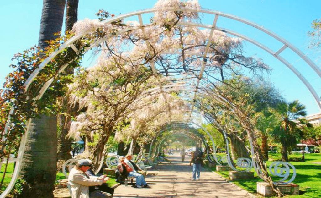 Obiective turistice Nisa - Jardin Albert I