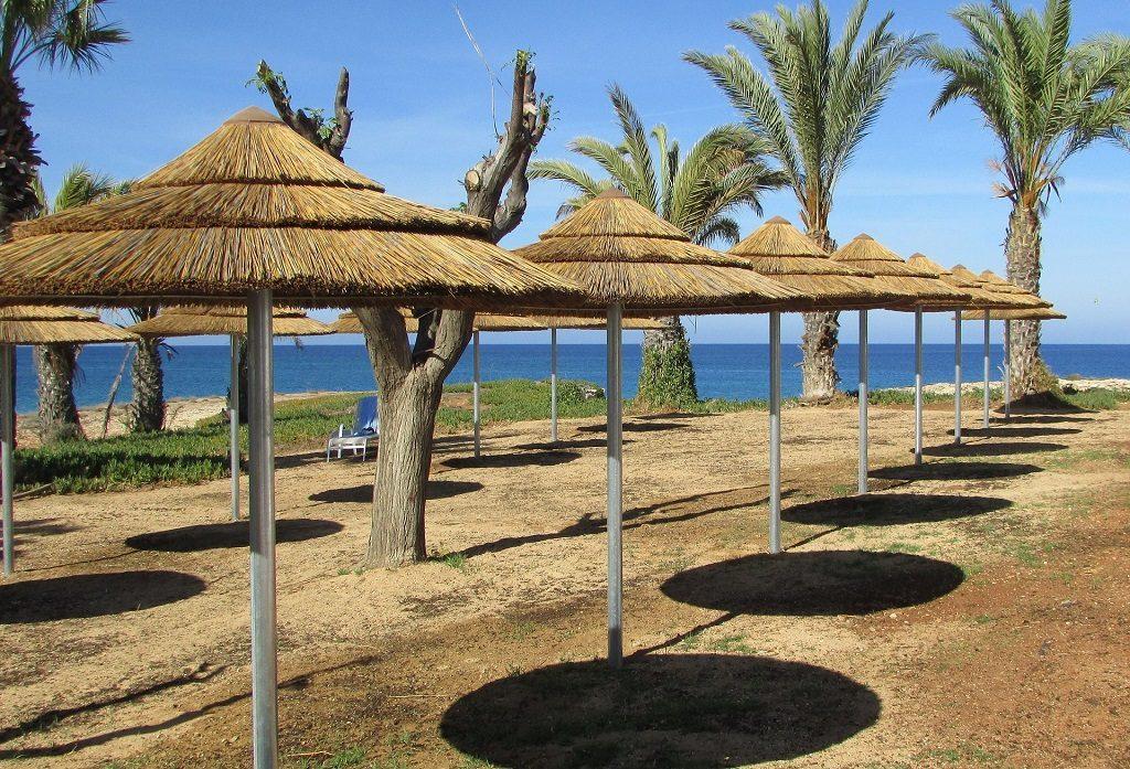 Cipru - umbrelute si palmieri