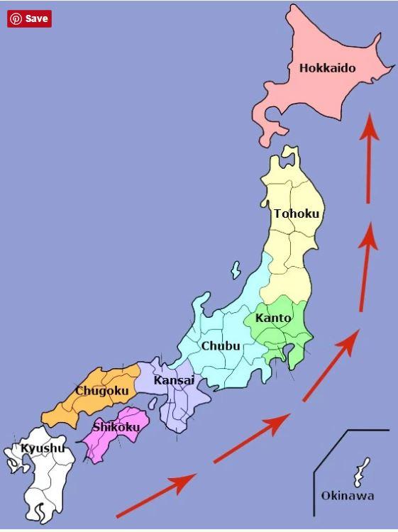 Festivalul Florilor de Cires Japonez - harta tendintei infloririi