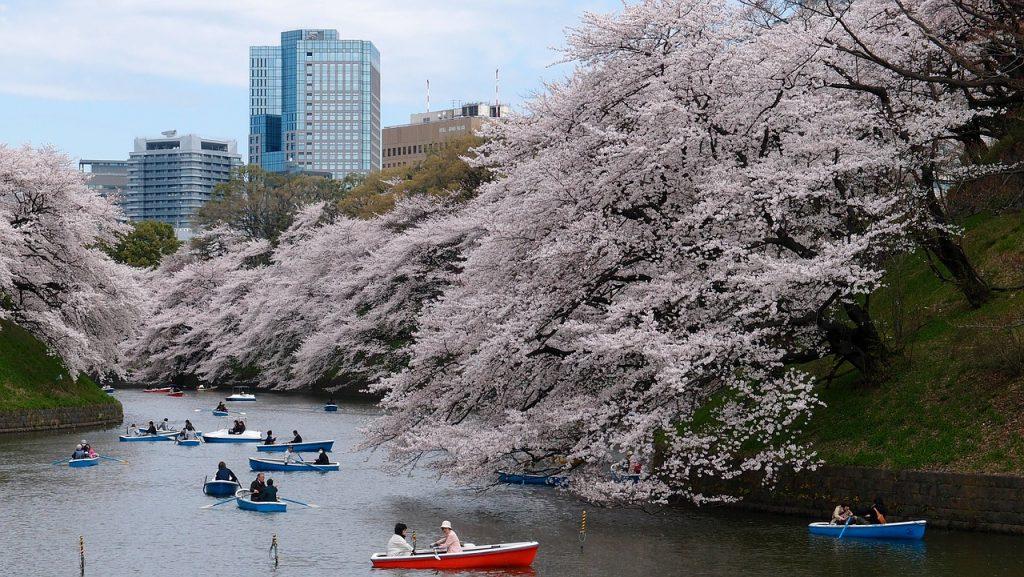 Turisti in Parcul din Tokyo