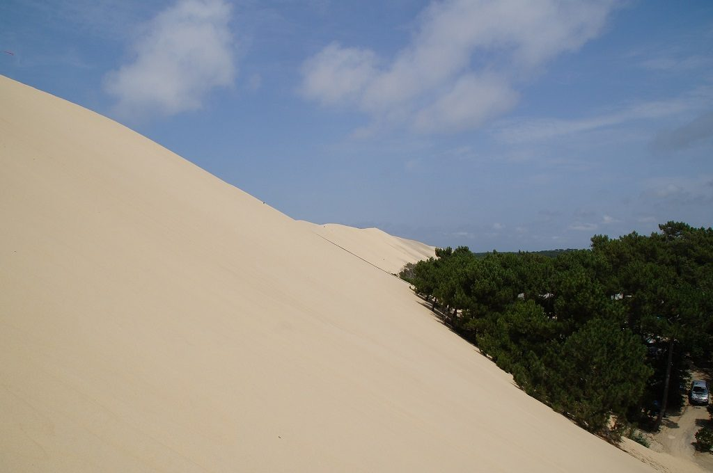 Dune du Pilat - imagine cu padure
