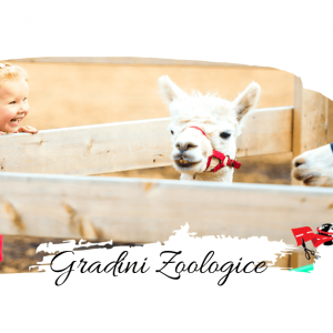 Top 7 gradini zoologice Europa